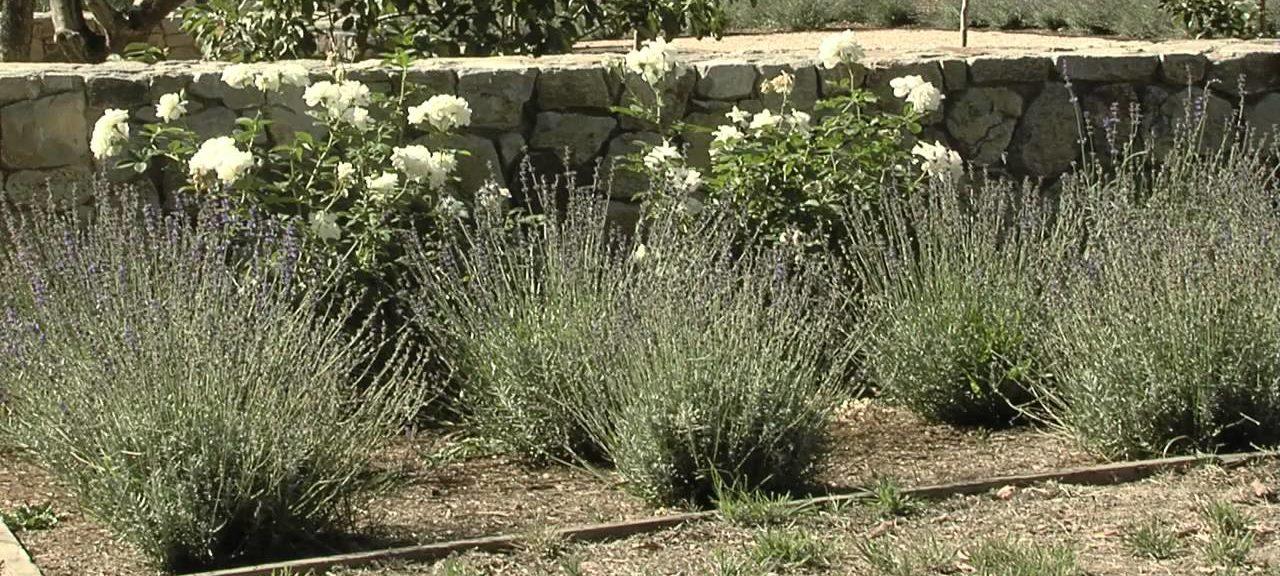 progettazione giardino perugia